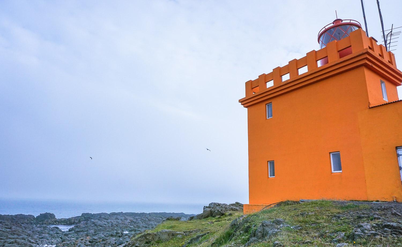 Dalatangi, Iceland, East Iceland, guided tours, super jeep tours, shore excursion,